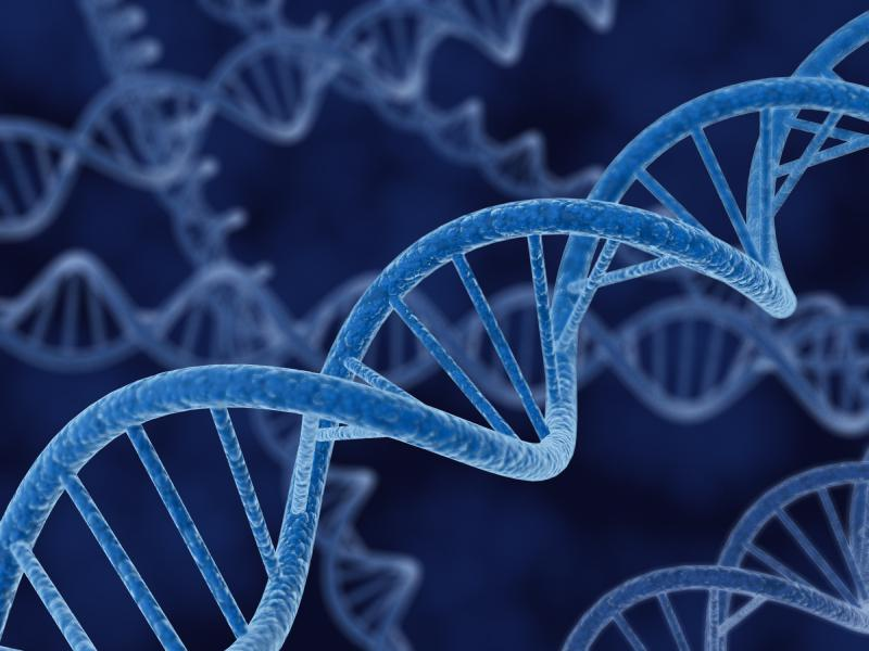 Is Racism in Our DNA? Guest article